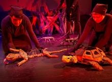 Lizard-puppeteer-Alanna-Strong-and-Tortoise-puppeteer-Sabrina-DeWeerdt