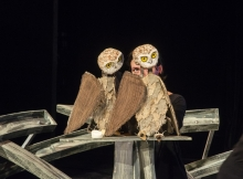The-Owls
